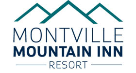 Montville Accommodation - Montville Mountain Inn Resort, Montville QLD